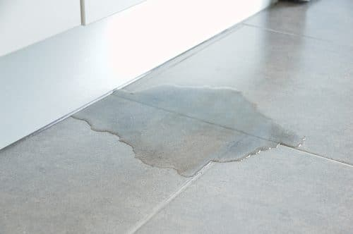 Slip and Fall Accidents Are Common for These and Other Reasons